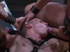 Rough guys in leather straps banging hungry stud