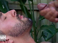 Bulge Scene 2: A Massage To Remember - NakedSword Originals