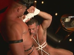 Red Light - Tyler Saint, Bruno Bond