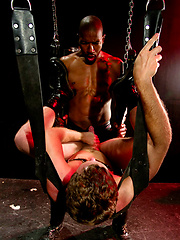 Bo Matthews lies in a sling being rimmed by Scott - Gay porn pics at GayStick.com