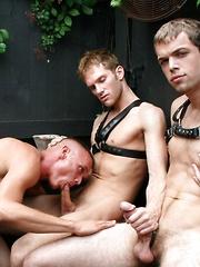 Threeway blow jobs in the Back Room - Gay porn pics at GayStick.com