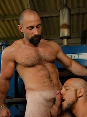 Two guys are so into each other, and they are rough in every sense of the word - Gay porn pics at GayStick.com