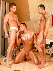 Thre muscled hunks fuck - Gay porn pics at GayStick.com