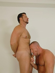 Two painter decorators working late find stiff cocks - Gay porn pics at GayStick.com