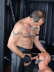 Naked bald daddy Forrest Gunner is brought in and strapped standing up to a big X - Gay porn pics at GayStick.com