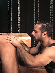 Adam puts Logan on his back spreads his legs and slams Logans hole - Gay porn pics at GayStick.com