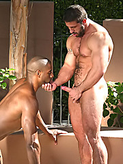 Hot hunks interracial coupling in the pool - Gay porn pics at GayStick.com