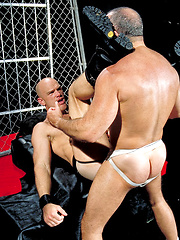 Musclebear power slut Steve in rough hardcore scene - Gay porn pics at GayStick.com