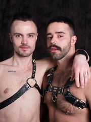Teddy Taggart and Teddy Torres - Gay porn pics at GayStick.com