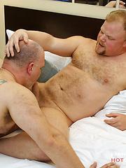 Bareback Daddy Bears - Gay porn pics at Gaystick