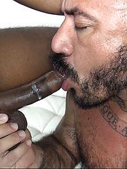 Alessio Romero Takes Romance's Big Black Cock - Gay porn pics at Gaystick