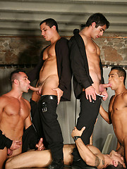 Hot hunky gays have groupsex orgies