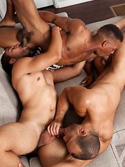 Three hot models from Randy Blue. Adrian, Robert & Sean - Gay porn pics at GayStick.com