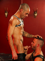 Issac Jones and Aaron Steel - Gay porn pics at GayStick.com