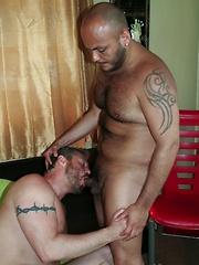 Veteran Hottie Tony Rivera takes new comer Darren Kane under his wing - Gay porn pics at GayStick.com