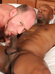 Fantastic interracial gay scene - Gay porn pics at GayStick.com