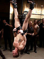 Trent Diesel Bound and Suspended.Christian Wilde, Nick Moretti, Trent Diesel, Van Darkholme - Gay porn pics at GayStick.com