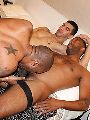 Two black cocks and one white hole - Gay porn pics at GayStick.com
