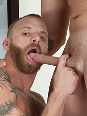 Watch Ty Dylan and Darius Soli, suck, slam, and seed resident beefcake Derek Parker - Gay porn pics at GayStick.com