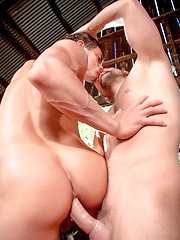 Jesse Santana and Tom Wolfe make each other blowjob - Gay porn pics at GayStick.com