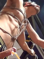 Dolan Wolf vs Mitch Tyler - Gay porn pics at GayStick.com