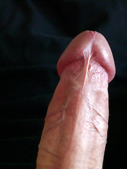 Bald handsome Vinnie Mark cums on his stomach - Gay porn pics at GayStick.com