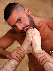Tats, toys, gear and a lot of ass play - Gay porn pics at GayStick.com