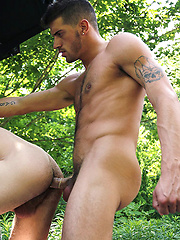Ty Roderick Fucks the Hell out of Asher Hawk - Gay porn pics at GayStick.com