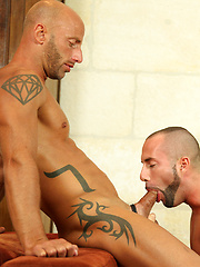 Eating Meat And Pounding Hole - Gay porn pics at GayStick.com
