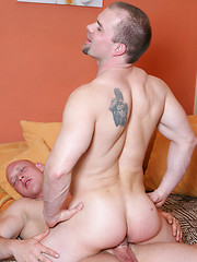 Two beefy men have wild anal sex - Gay porn pics at GayStick.com