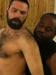 Furry White Bear Gets Black Cub Cock - Gay porn pics at GayStick.com