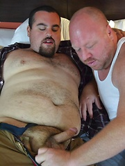 Cub Milks Bear With Sweet, Tight Fuckhole - Gay porn pics at GayStick.com