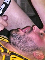 Cubs That Bump In The Night - Gay porn pics at GayStick.com