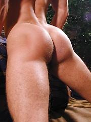 Beefy euro jock Eric - Gay porn pics at GayStick.com
