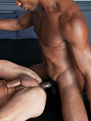 Exclusive Sean Xavier's Big Black Cock Rips Apart Dominic Pacifico - Gay porn pics at GayStick.com