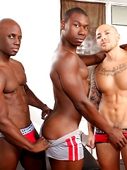 Next Door Ebony – Park Cruisers - Gay porn pics at GayStick.com