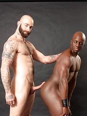 Next Door Ebony – Calendar Boys - Gay porn pics at GayStick.com