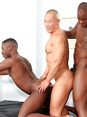 Next Door Ebony – Birthday Surprise - Gay porn pics at GayStick.com