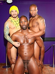 Next Door Ebony – Setting the Bar - Gay porn pics at GayStick.com