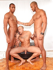 Next Door Ebony – Tenant Behavior - Gay porn pics at GayStick.com