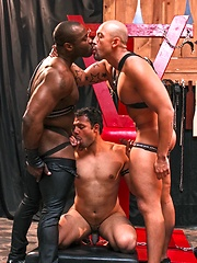 Next Door Ebony – Shorn and Shamed - Gay porn pics at GayStick.com