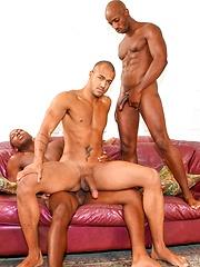 Next Door Ebony – Triple Threat - Gay porn pics at GayStick.com