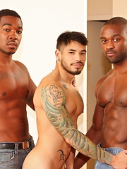 Next Door Ebony – Alternative Payment - Gay porn pics at GayStick.com