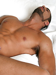 Wlliam Bravo and Lucas Fox - Gay porn pics at GayStick.com