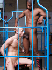 Breno and Jay place Mikey and sports guy Dirk in a common drill cage for fun. Immediately Mikey ... - Gay porn pics at GayStick.com