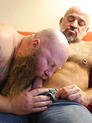 Beefy Daddy Nate Pierce and Ginger Giant Rusty G - Gay porn pics at GayStick.com