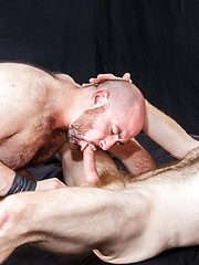 The Pigs Say Oink - Part 3 - Gay porn pics at Gaystick